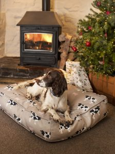 Spaniel on dog bed in front of fire